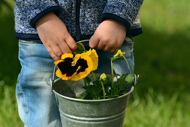 Child holding pail of flowers